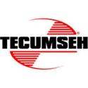 Immagine per la categoria Tappi serbatoio Tecumseh