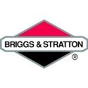 Immagine per la categoria Tappi serbatoio Briggs Stratton