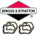 Immagine per la categoria Briggs & Stratton teste cilindro