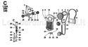 Picture for category TIMING/ CAMSHAFT/ VALVES