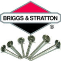 Picture for category Briggs & Stratton valves