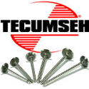 Picture for category Tecumseh valves