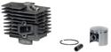 Picture of Kit cilindro pistone GGP Alpina  360360