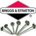 Immagine per la categoria Valvole Briggs & Stratton