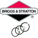 Immagine per la categoria Fasce elastiche Briggs Stratton