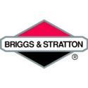 Immagine per la categoria Serie guarnizioni Briggs & Stratton