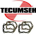 Immagine per la categoria Tecumseh teste cilindro